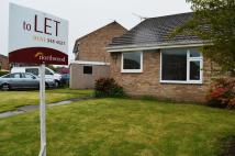 2 bed Semi-Detached Bungalow to rent in Heathbank Avenue, Irby...