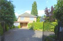 Detached home in Coombe Ridings...