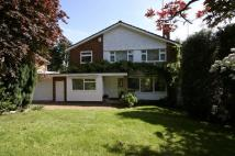 Detached property to rent in Greenwood Park...
