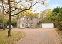 property to rent in Pinecote Drive, Sunningdale, Ascot, Berkshire, SL5