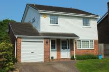 4 bedroom house in Sherwood Drive...