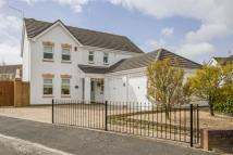 Detached house for sale in Marine Heights, Barry...