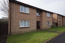 Studio flat for sale in Limeslade Close, Cardiff...