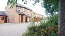 2 bed semi detached property for sale in Shenley Church End...