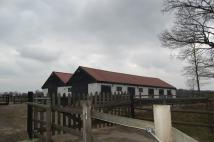 Equestrian Facility home to rent in Ramsden Heath...