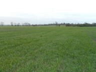 Farm Land for sale in East Mersea, Colchester