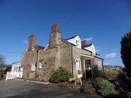 Cottage to rent in Brockhampton, Hereford...