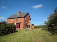 Cottage to rent in Weston Beggard...