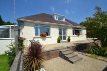 4 bed Detached Bungalow for sale in Cae Cael, Heol Eglwys...