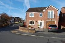 Detached property in Ty Newydd...
