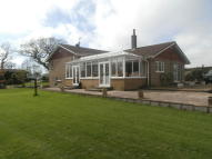 6 bedroom Detached house for sale in Oakfield House, Penybryn...