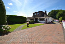 3 bedroom Detached Bungalow for sale in Y'nythfa...