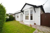 2 bed Semi-Detached Bungalow in 9 Meadow Street...