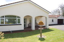 Detached Bungalow in Tregroes Bungalow...