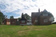 Detached property to rent in Peasmarsh, East Sussex