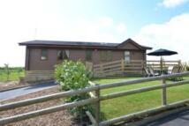 Detached house to rent in Biddenden, Kent