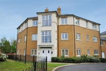 2 bed Ground Flat to rent in Chelmer Road, Chelmsford...