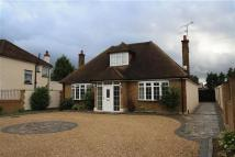 Detached Bungalow to rent in Hercies Road, Hillingdon...