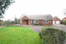 Detached Bungalow in High Street, Colton...
