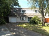 3 bed Detached Bungalow for sale in Elm Park...