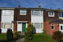 3 bed Terraced property to rent in Waveney Drive, Chelmsford
