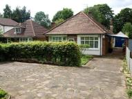 Bungalow to rent in Harlington Road...