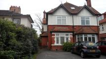 1 bed Flat to rent in LOWTHER ROAD, CHARMINSTER