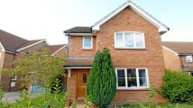 3 bed Link Detached House to rent in Newbury Close, Charvil