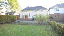 Detached property in London Road, Twyford