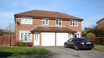 Scott Close semi detached property to rent