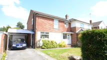 3 bedroom semi detached property to rent in Antrim Road, Woodley