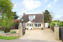 Bungalow for sale in Avenue Road, Rushden...