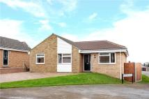 3 bedroom Bungalow for sale in Springfield Drive...