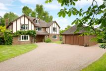 Detached home in Bromham Road, Biddenham...