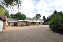 7 bed Detached house to rent in East Drive, Wentworth...