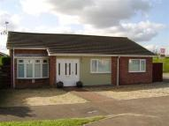 Detached Bungalow in The Elders, Lakenheath...