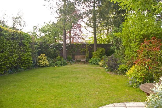 rear garden, viewed from patio