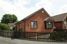 Detached Bungalow for sale in St Andrews Close...