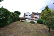 3 bed Detached house for sale in Ash Grove, Heybridge...