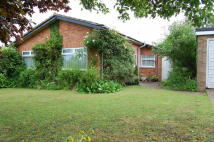 3 bedroom Detached Bungalow for sale in Jacqueline Close...
