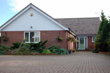 Detached Bungalow in Rectory Road, Hollesley...