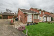 Semi-Detached Bungalow to rent in Millway, Wymondham...
