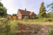 3 bed Chalet for sale in Dambrigg, Banham, NR16