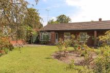 Semi-Detached Bungalow for sale in Attleborough Road...