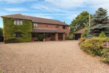 Detached property for sale in Norwich Road...