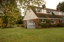 Cottage to rent in Bekesbourne