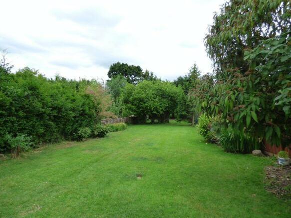 Garden From House