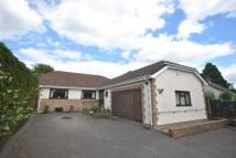 Bungalow to rent in Woodcock Way, Chardstock...