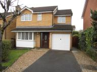 4 bed property to rent in Foxglove Way, , Chard