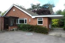 Bungalow to rent in Harford Manor Close...